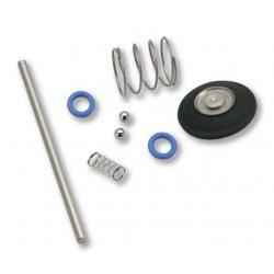 Rebuild Kit, Carburetor, Accelerator Pump