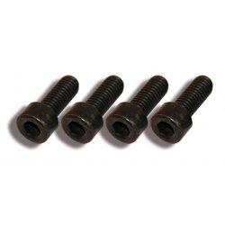 Fender screw set (4 piece set)