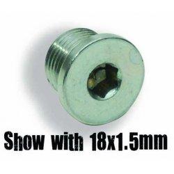Sensor Bung Plug 12 x 1.25 mm