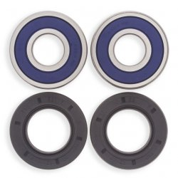 All Balls, Wheel Bearing Seal Kit, Front, Rear (Victory only)
