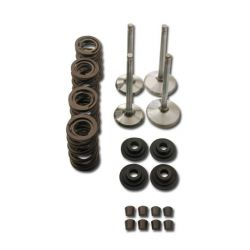 Manley Race Master Valve Train Component Kit